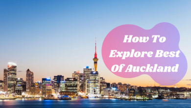 How To Explore Best Of Auckland On Visit