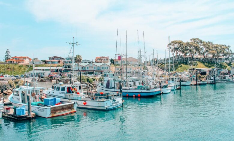 How To Get Best Places To See In  Morro Bay