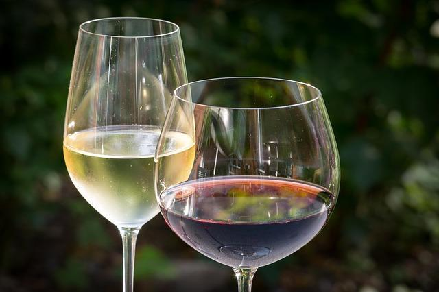 Discover the 5 Different Types of Wine