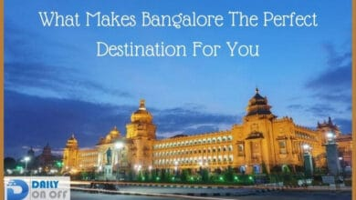 What Makes Bangalore The Perfect Destination For You
